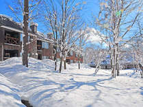 冬の白馬は最高の雪が楽しめます!