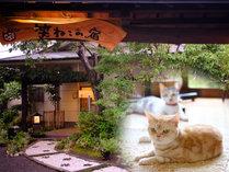 猫カフェも楽しめる湯布院のお宿