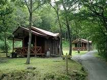 自然に囲まれたロッジ&オートキャンプ場で。