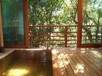 【光】朝の穏やかな光を浴びながら湯浴みを・・・