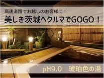 高速道路でお越しのお客様に!美しき茨城へ車でGOGOプラン