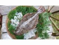 平戸は天然ひらめの宝庫です。とれたてヒラメの贅沢なスペシャルプランです。