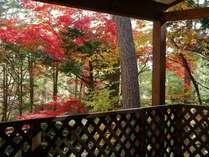 温泉付きコテージの紅葉 テラスからは川のせせらぎも聴こえ心和ましてくれます。