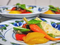 【夕食】地元の野菜たちをメインに、その日の仕入れによって異なる食材を彩鮮やかに調理。