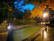 ◆素泊まりプラン◆源泉100%かけ流し ~全国から温泉ファンが集う名湯「石鹸いらずの美人湯」に癒される~