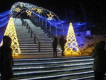 鳥取砂丘が贈るクリスマスイベント☆鳥取砂丘イリュージョン☆