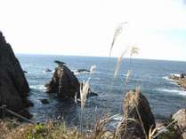 秋 山陰の松島(千貫松島)網代港より徒歩5分