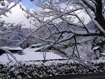 冬の訪れとひだ路の外観