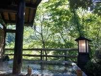 緑眩しい川沿いの露天風呂で森林浴も愉しむ