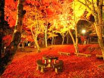 笠置寺自然公園