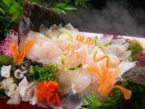 ◆ヒラメの姿造り◆世界でも評価の高い、豊後水道で獲れた絶品地魚のお造りに舌鼓♪