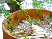 *鮎は【香魚】ともいい天然のものは、川コケのかぐわしい香りが。当館の鮎はもちろん天然!!