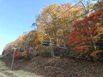 *周辺 /斑尾山山頂・希望湖・赤池方面へのトレッキングコースも充実しています
