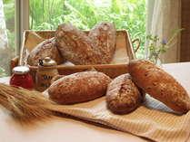 毎朝お出ししている手作りの焼きたて天然酵母パン