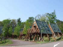 *【コテージ・外観】ユニークな三角屋根が目印