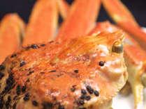 冬の味覚の王様、《松葉ガニ》。焼いてよし、茹でてよし、刺身でよし。
