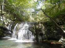 石樋の滝。宿よりお車で3分、徒歩約20分にて、渓流の森林浴を休憩室にてお楽しみ頂けます。