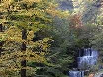 当館の牧水荘に面した滝「湯沢」。