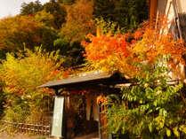 秋の色づく山里 10月中旬~11月上旬に見頃を迎えます。