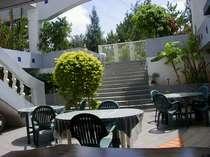 [写真]朝日が差し込む、明るい雰囲気の中庭