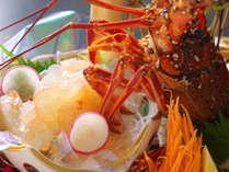 【伊勢海老姿造り】ぷりぷり食感と上品な甘味が味わえる伊勢海老をお刺身で♪