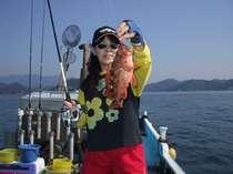 常連さんが釣った「大カサゴ」という魚です!,三重県,かわちや旅館