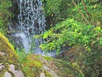 清らかな空気が心地良い鬼岩公園,岐阜県,和味の宿 いわみ亭