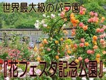 世界最大級のバラ園『花フェスタ記念公園』で、四季の花を堪能*+゜,岐阜県,和味の宿 いわみ亭
