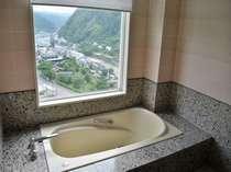 周りの山川草木を望める客室展望浴室(客室のお風呂は温泉ではございません)