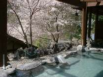 【貸切露天風呂★たまゆらの湯】春には桜をご覧いただきながら、温泉にゆったり浸っていただけます♪