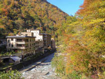 小川上流からの秋の遠景