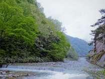 ホテルおがわは小川というとても綺麗な川沿いに立っています