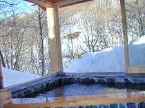 貸切露天とフルコースディナーでゆったりスキーor雪見