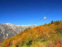 【新穂高ロープウェイ】紅葉の山々の上を空中散歩♪見頃は例年10月中旬~11月上旬頃