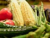 地元秋田の季節感溢れる素材・お料理をお楽しみ下さい。