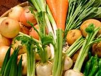 新鮮でおいしい野菜をどうぞ