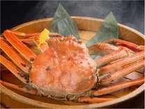 【一人旅】 熱々のタグ付き越前ゆで蟹を一杯一人で食す♪ゆで蟹懐石コース