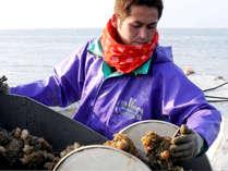 漁師が厳選する旬の魚介を召し上がれ♪