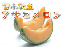 ≪旬の逸品≫すっきりとした甘さ!苫小牧産・アサヒメロン付♪ 夕食は居酒屋で三段重『杏の菜箱』