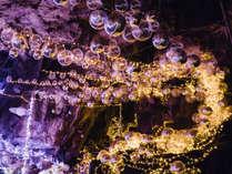 『光と雪の物語』特殊なバルーン×ライトの光で龍河洞が幻想的な空間に!