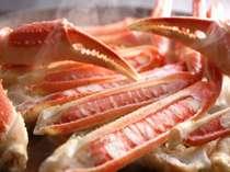 【じゃらん限定】今なら松葉かにのかに焼きコースに~香住かに茹で蟹付き~紅白かにの食べ比べ★