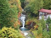 おしどり隠しの滝の真横に位置する秘湯明治温泉旅館