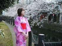 桜の咲く季節はオススメ写真スポットが盛り沢山!!(別途料金)