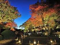 日本庭園(紅葉)