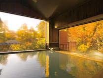 秋の大浴場イメージ。紅葉の見頃は10月下旬~11月上旬です。