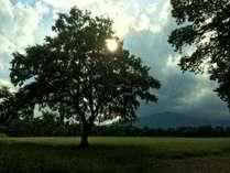 広大な草原と大自然の中で、のんびりと日常を忘れる旅♪