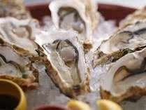 鳥羽産の浦村牡蠣は養殖場直送。美し国だからこその豊かな食材をお召し上がり下さい。