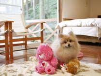 コテージ With the dog 専用客室 イメージ