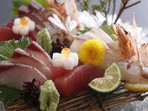 地元漁港水揚げの新鮮な熊野灘の魚。脂の乗った旬のお造りをご用意いたします。