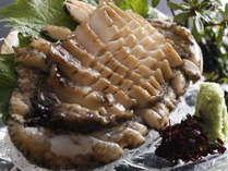 コリコリの食感。東紀州産の鮑を使用いたしております。